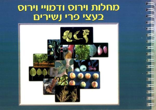 trees_viruses_and_diseases.jpeg