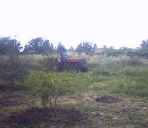 dcp_tractor_03.jpg