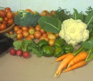 harvest_0412_001.jpg