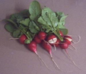 harvest_0412_002.jpg