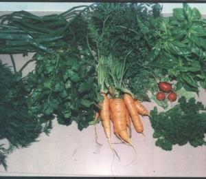 harvest_mix_12-12-2003.jpeg