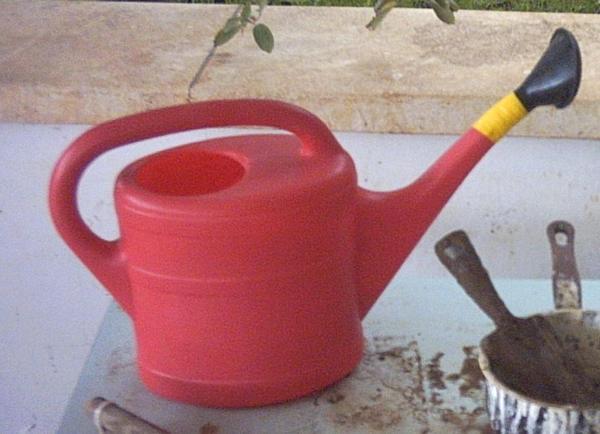 watering_tools_01.jpg