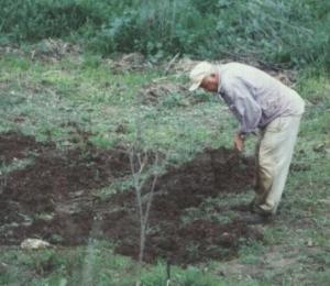 digging_0201.jpeg.jpg