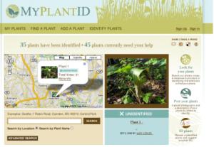 זיהוי צמחים